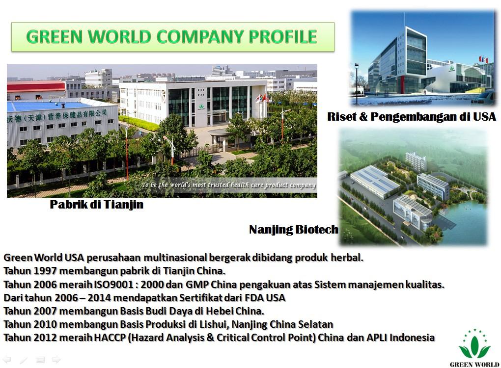 company-profile-GW-2
